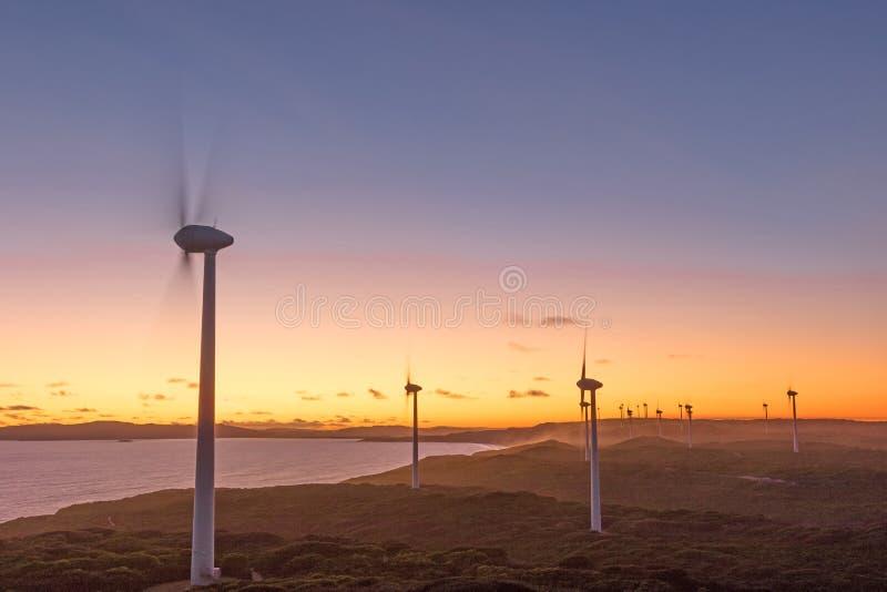 阿尔巴尼风力场日落 图库摄影