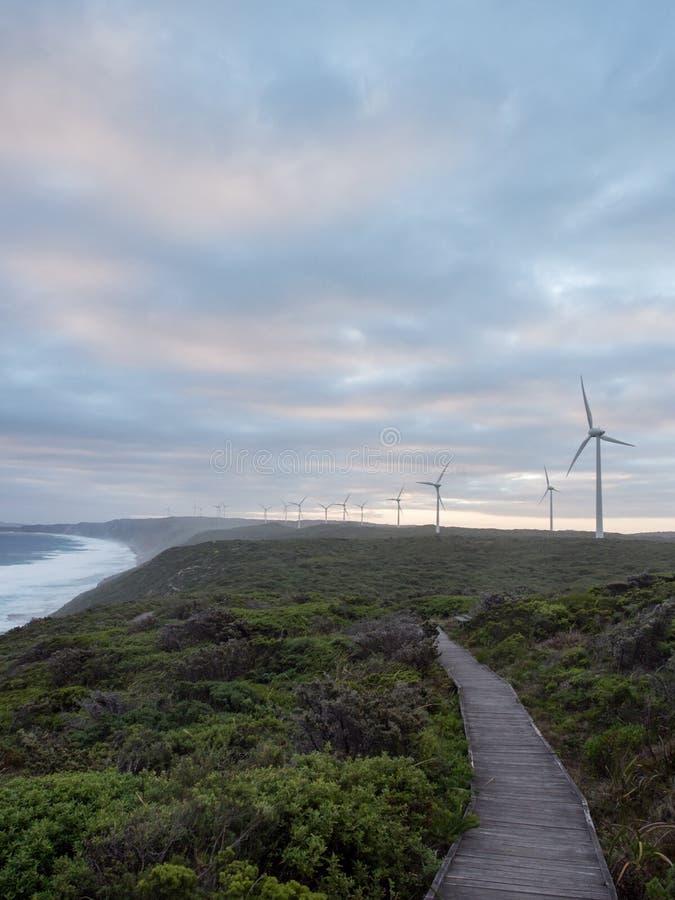 阿尔巴尼风力场,西澳州 免版税库存照片