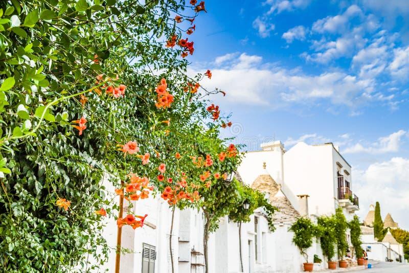 Download 阿尔贝罗贝洛Trulli房子在普利亚在意大利 库存照片. 图片 包括有 五颜六色, 开花, 布琼布拉, 拱道 - 62526684