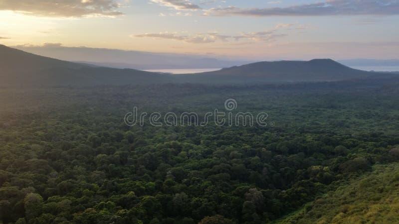 阿尔巴Minch,埃塞俄比亚 库存照片