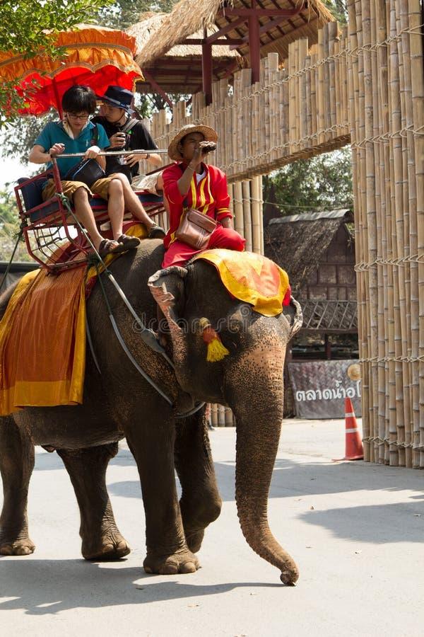 阿尤特拉利夫雷斯,泰国- 2018年2月15日:未认出的游人乘驾大象在阿尤特拉利夫雷斯参观Ayothaya浮动市场 免版税库存图片