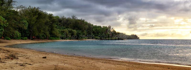 阿尼尼海滩,考艾岛 库存图片