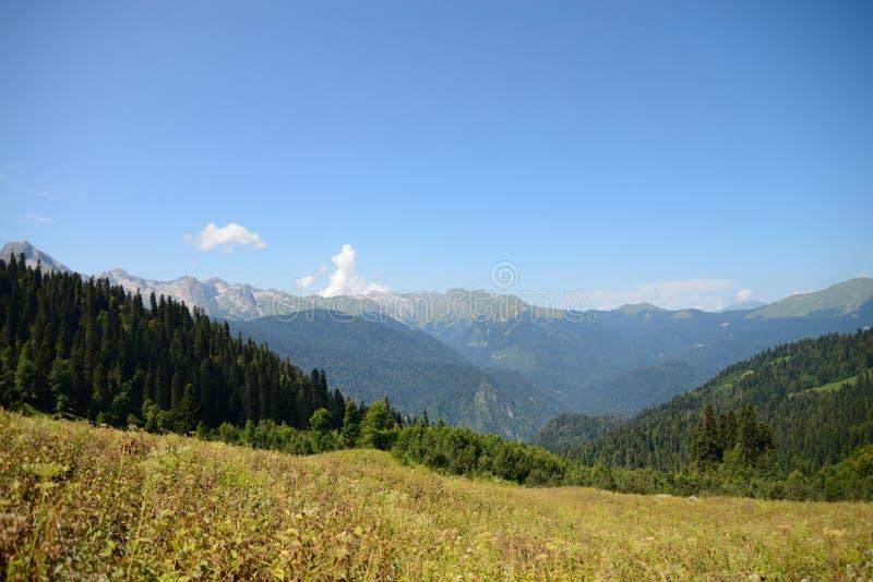 阿布哈兹的白种人范围、山和森林的看法 免版税库存图片