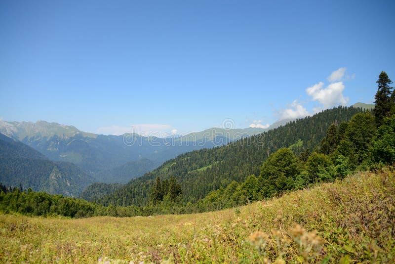 阿布哈兹的白种人范围、山和森林的看法 库存图片
