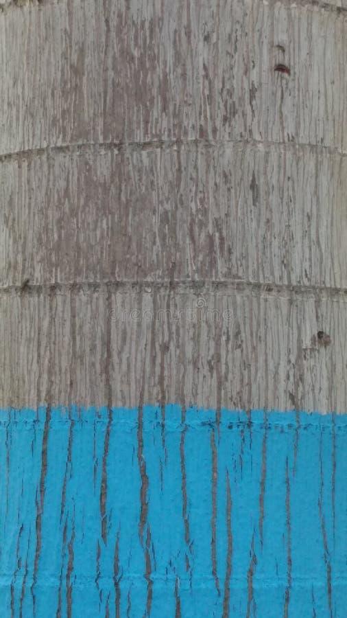 阿布格莱布abu蓝色树 库存图片