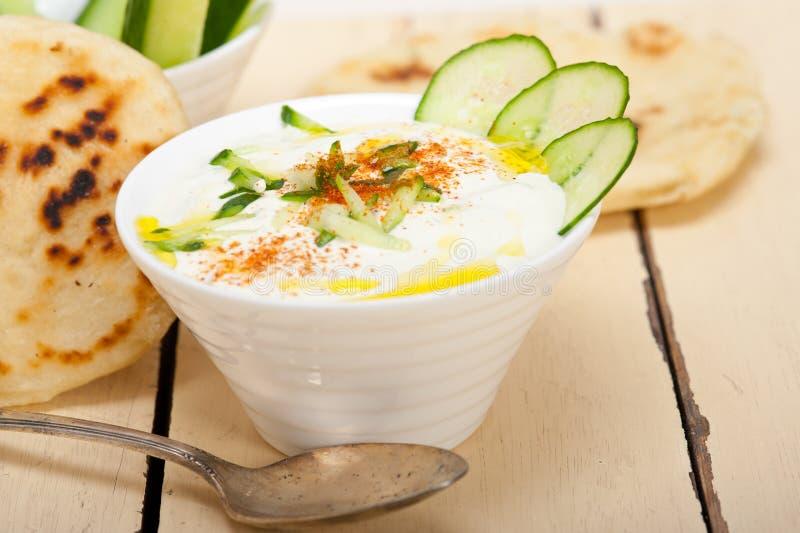 阿拉伯人中东山羊酸奶和黄瓜沙拉 免版税库存图片