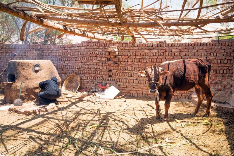 阿拉伯妇女烘烤面包在流浪的村庄 库存照片