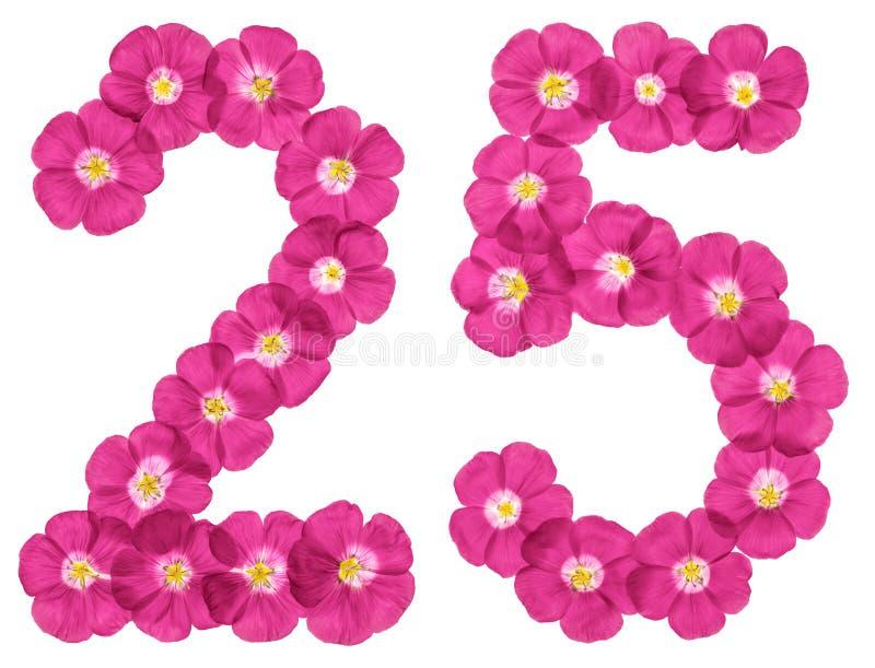 阿拉伯数字25,二十五,从胡麻桃红色花,隔绝在白色背景 向量例证