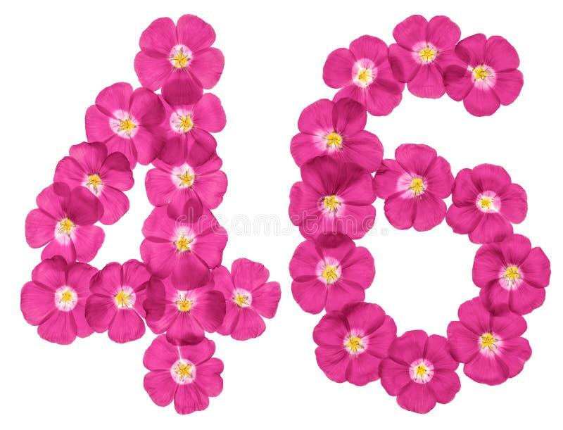 阿拉伯数字46,四十六,从胡麻桃红色花,隔绝在白色背景 库存例证