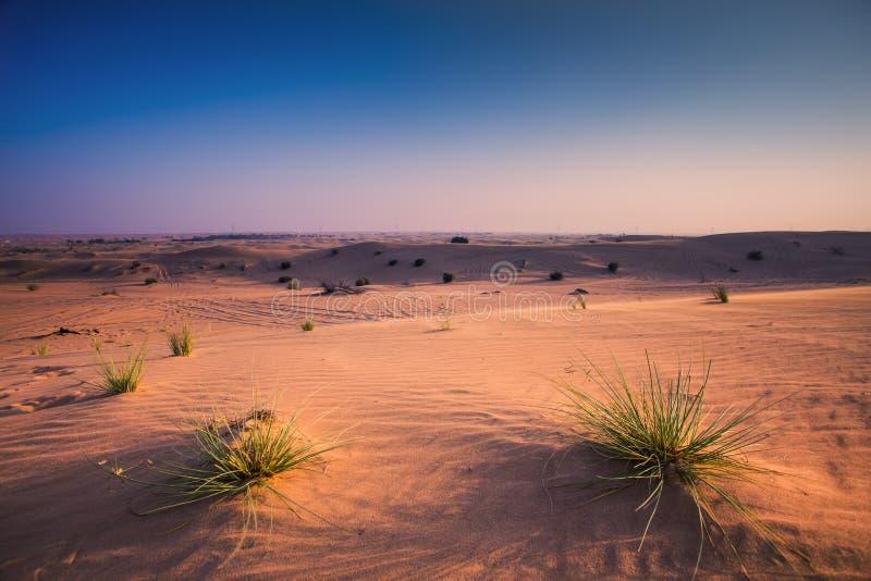 阿拉伯沙漠在晚上圖片