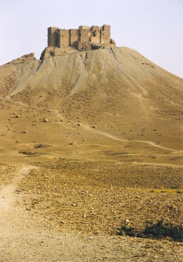 阿拉伯沙漠堡垒扇叶树头榈破坏叙利亚 免版税库存图片