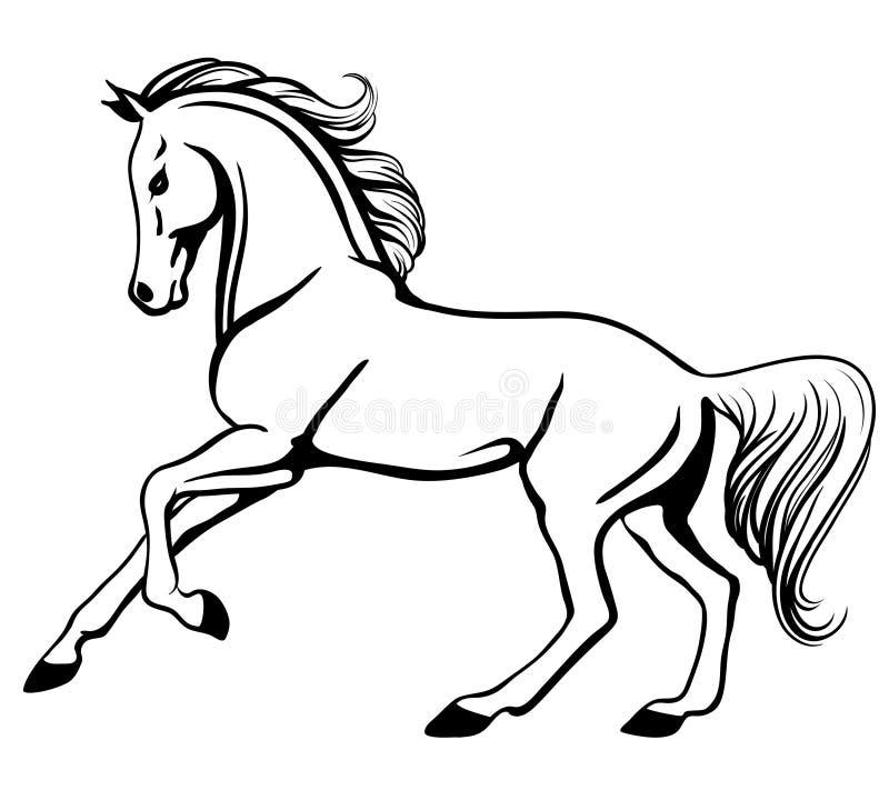 阿拉伯疾驰的马 向量例证