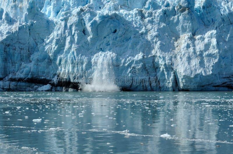 阿拉斯加产犊冰川margerie潮水 库存图片