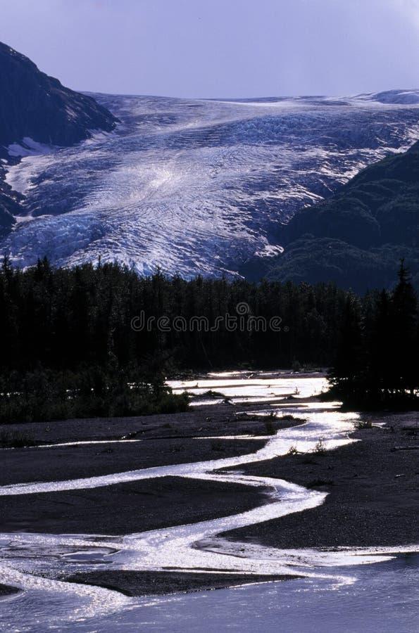 阿拉斯加冰川流 免版税库存图片