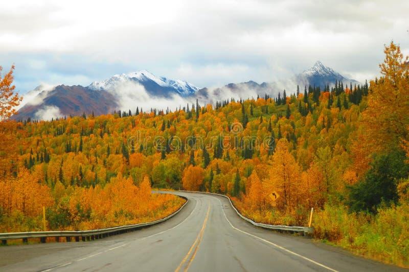 阿拉斯加在公园高速公路的山脉和秋天颜色 免版税库存照片