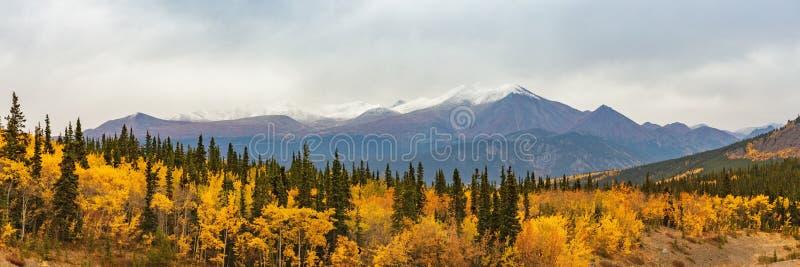 阿拉斯加山使在秋天秋季的自然背景环境美化 雪锐化全景 免版税库存照片