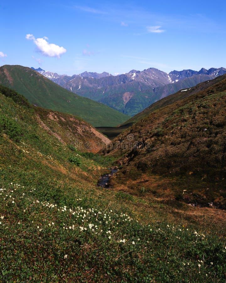 阿拉斯加横向夏天 库存照片