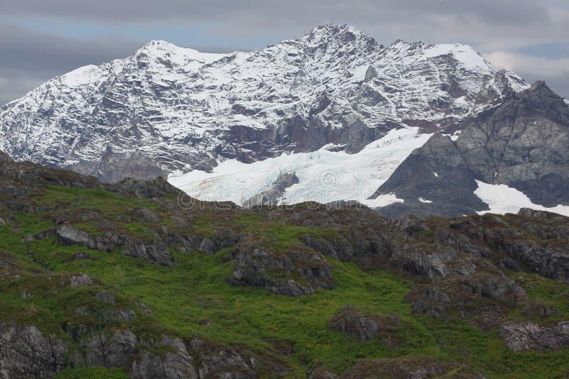 阿拉斯加海湾冰川国家公园 库存图片