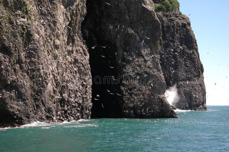 阿拉斯加海湾复活 免版税库存图片