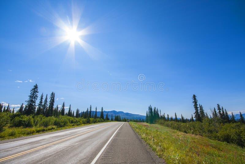 阿拉斯加的路 在美好的天气的Denali高速公路 库存照片