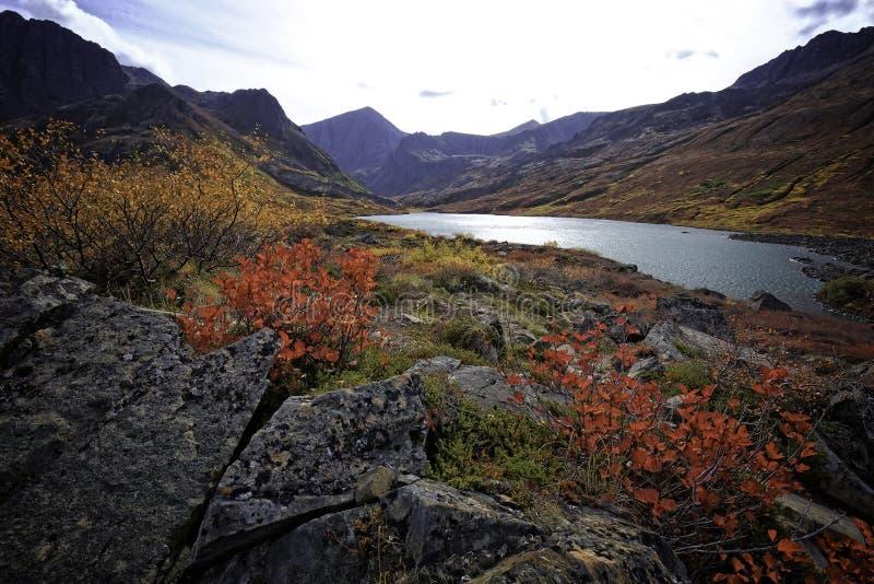 阿拉斯加的Country湖 免版税图库摄影