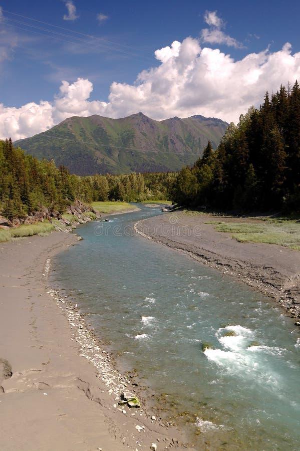 阿拉斯加草甸moutains河tres 库存照片