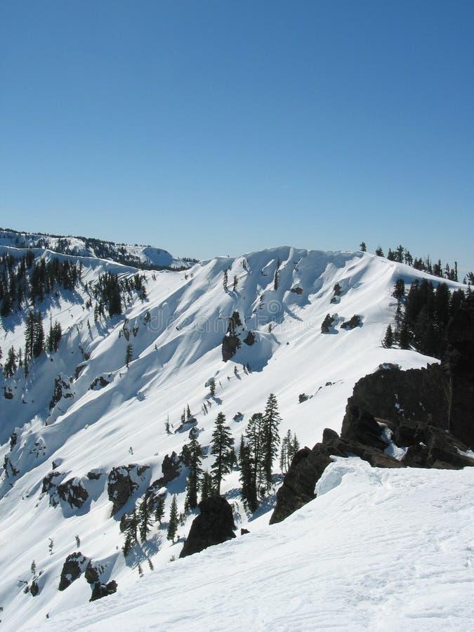阿拉斯加高山区小的草甸滑雪 免版税图库摄影