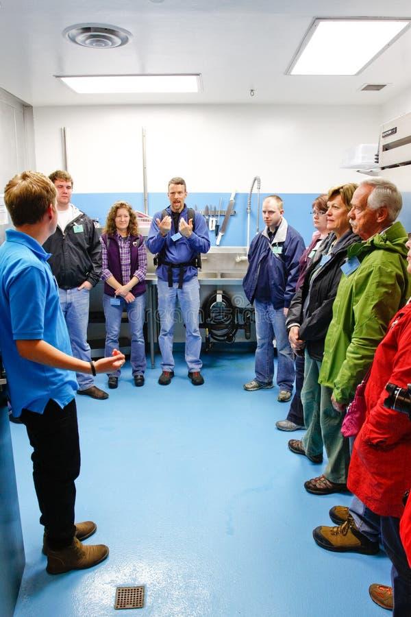 阿拉斯加-海洋生活中心在幕后游览 图库摄影