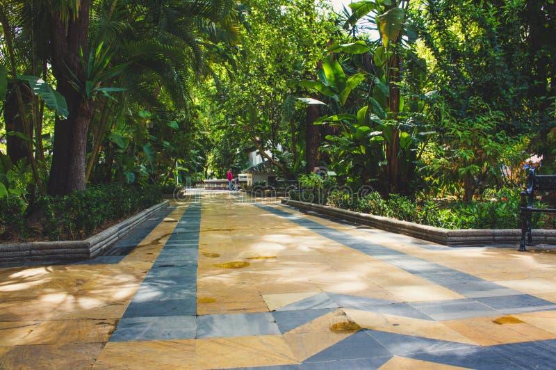 阿拉米达公园马尔韦利亚 免版税库存照片