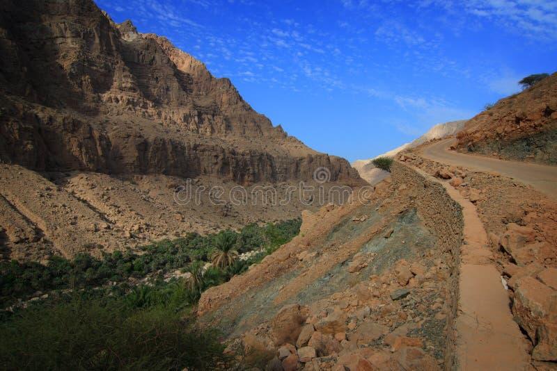 阿曼对旱谷的路tiwi 免版税库存照片