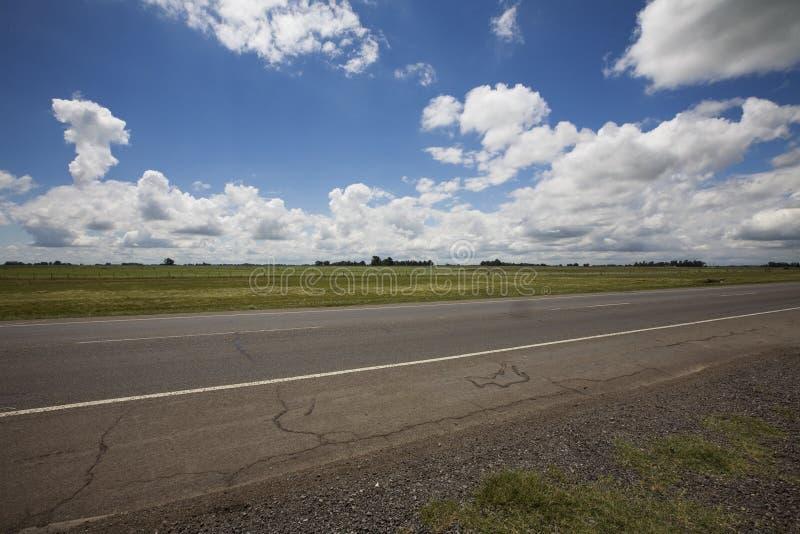 阿根廷南美大草原路 免版税库存照片
