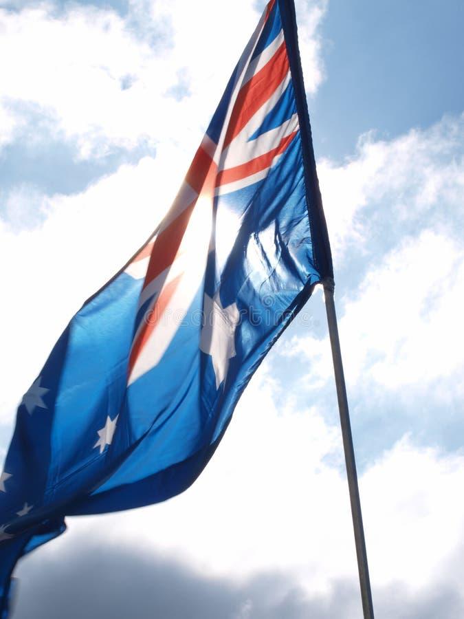 阿根廷国旗3 免版税图库摄影