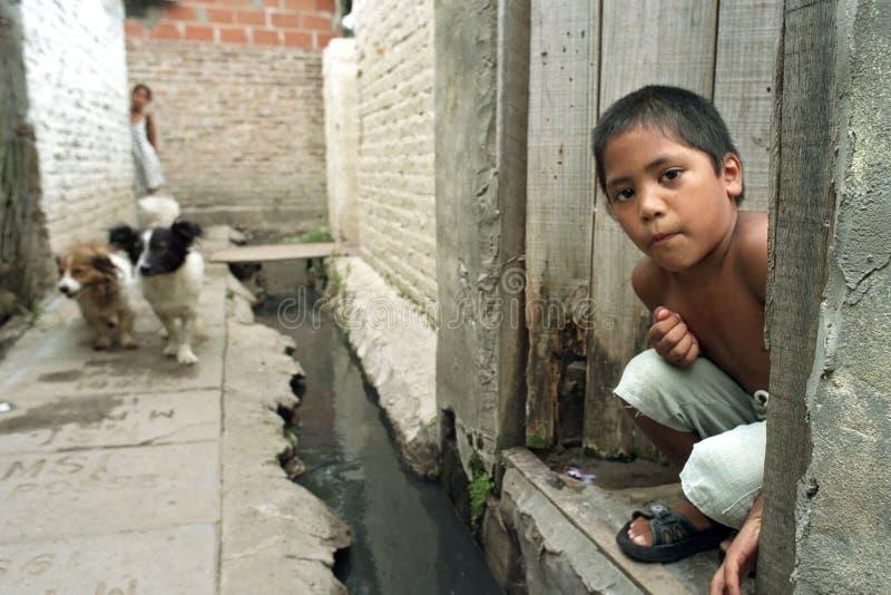 阿根廷男孩和他的狗画象  图库摄影