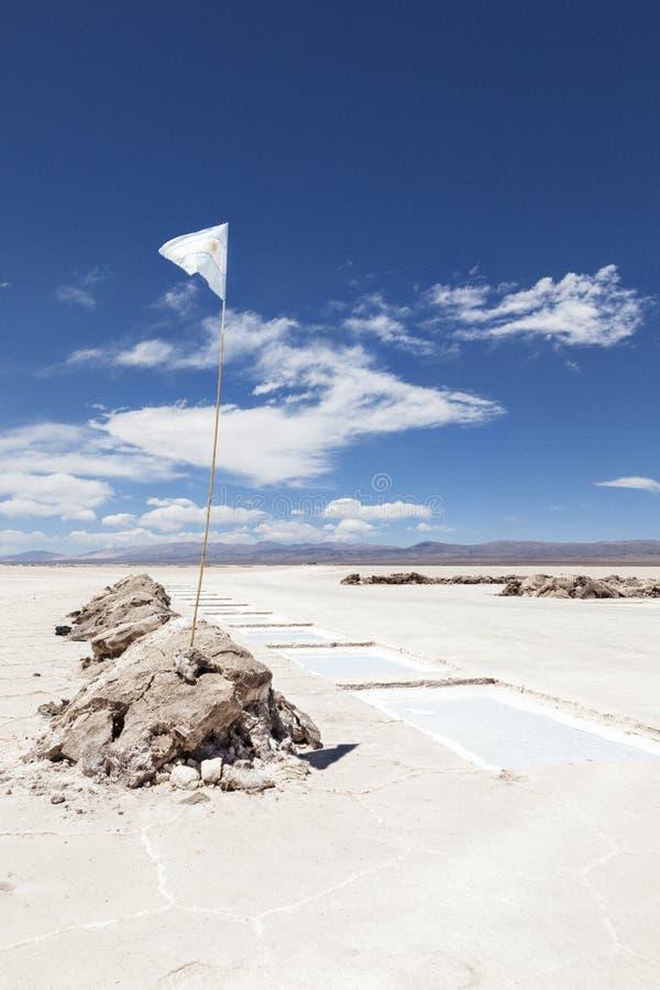 阿根廷的旗子 库存图片