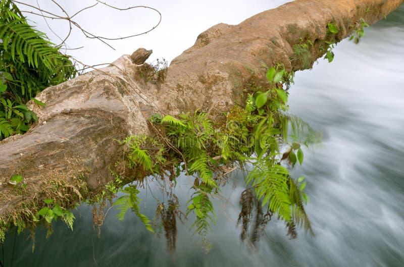 阿瓜azul cascadas de waterfall 免版税图库摄影