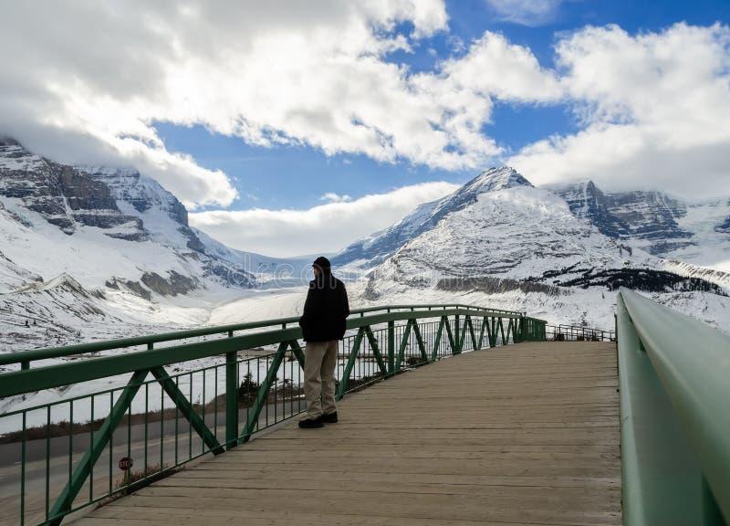阿萨巴斯卡冰川冬天视图在贾斯珀国家公园,阿尔伯塔,加拿大 免版税图库摄影