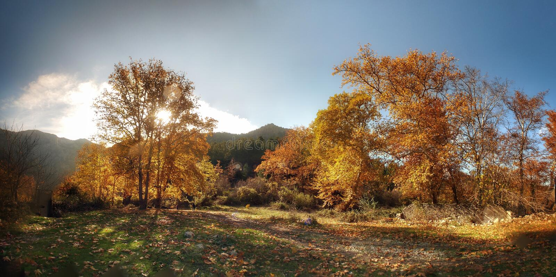 阿达纳土耳其秋季贝莱梅迪克自然公园 库存图片