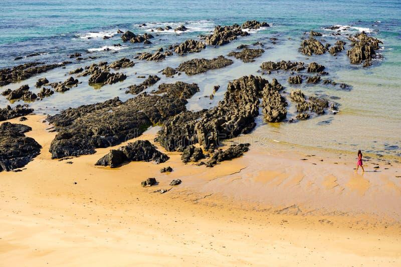 阿连特茹地区海滩的,葡萄牙孤独的步行者 库存图片