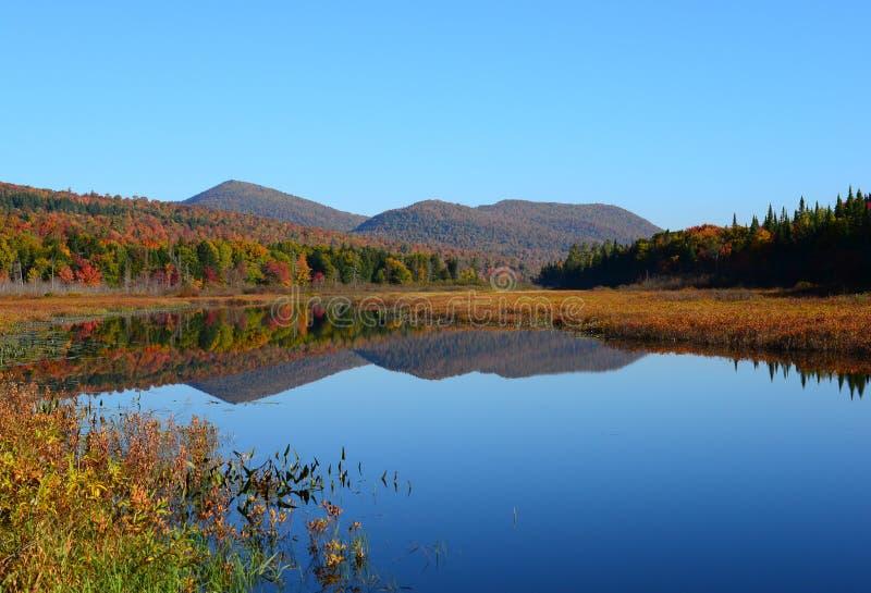 阿迪朗达克原野水路和山在秋天 免版税库存图片