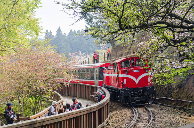 阿里山森林火车在阿里山全国风景区台湾 免版税库存照片
