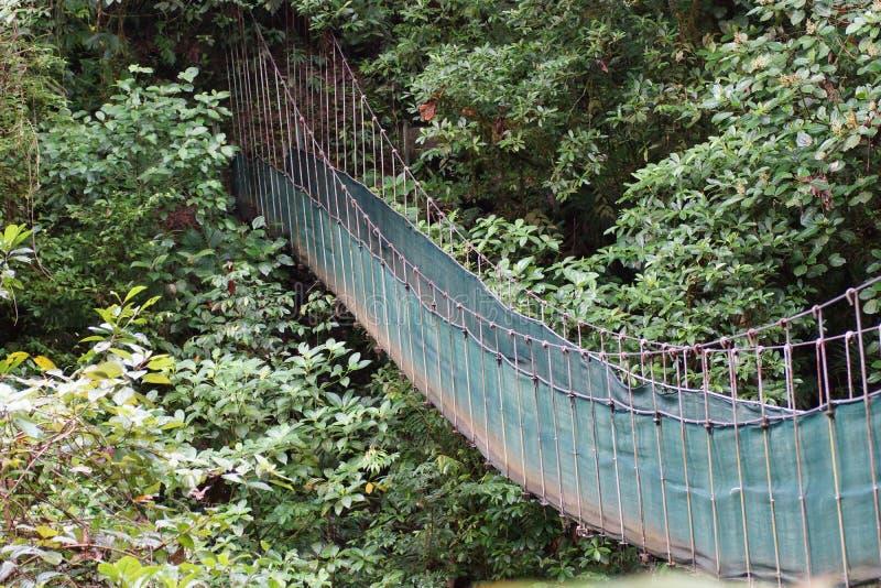 阿雷纳尔火山的暂停的桥梁 阿拉胡埃拉,圣卡洛斯,阿雷纳尔,哥斯达黎加 库存图片