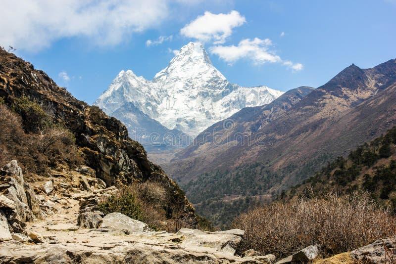 阿马Dablam,喜马拉雅山,尼泊尔 免版税库存照片