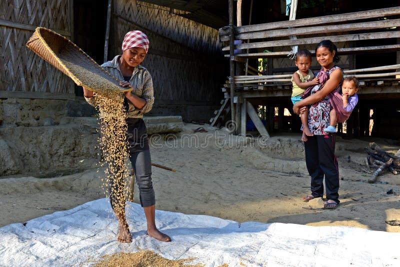 阿鲁纳恰尔邦农业  免版税库存图片