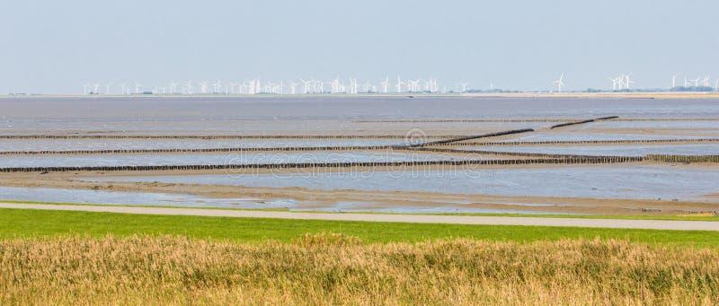 阿默兰岛弗里斯兰省人海岛岸的空中沿海看法  免版税库存图片