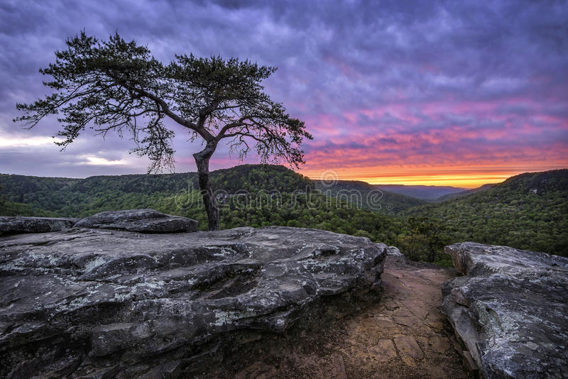 阿巴拉契亚山脉,风景日落,田纳西 免版税库存图片
