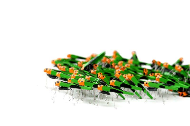 陆军蟋蟀 库存图片
