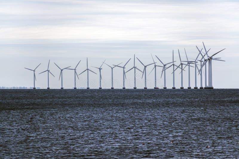 陆风农场在波罗的海,环境的概念 免版税库存图片