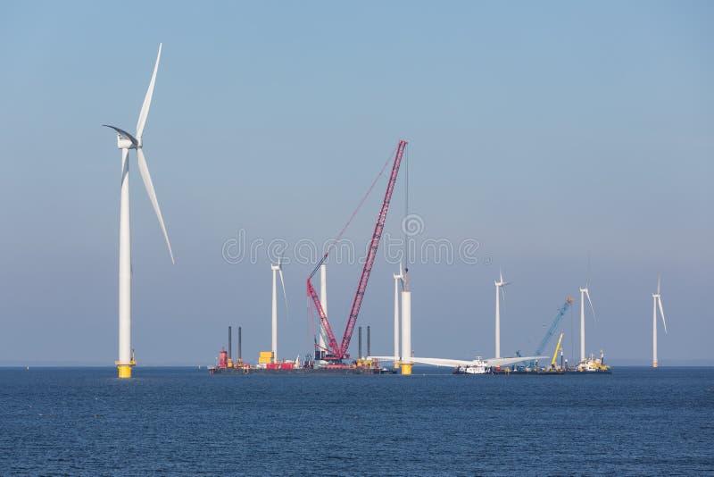 陆风农场建造场所在荷兰海岸附近的 库存照片