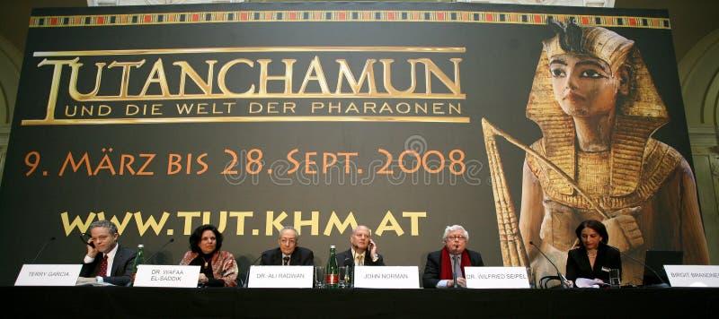 陈列tutankhamun 免版税库存图片