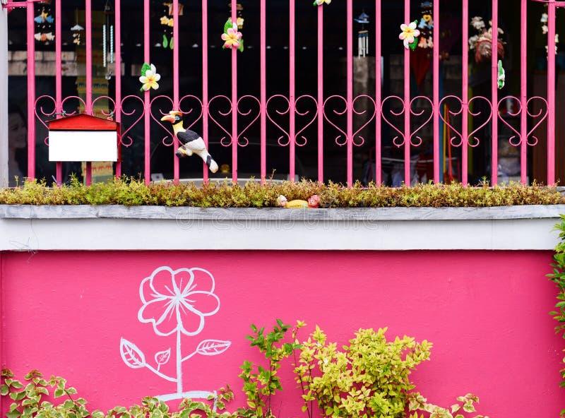 降下&在老色的混凝土墙上的绿色常春藤植物 库存照片